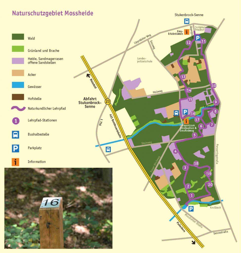Karte Naturkundlicher Lehrpfad Moosheide